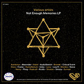 Not Enough Memories LP by Various Artists