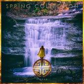 Spring Collection 2019 - EP de Various Artists