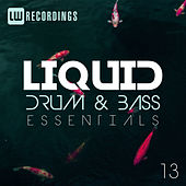 Liquid Drum & Bass Essentials, Vol. 13 - EP by Various Artists