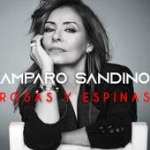Rosas y Espinas de Amparo Sandino