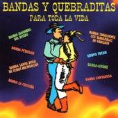 Bandas y Quebraditas by Various Artists