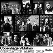 Copenhagen / Malmo Compilation Album 2019 von Various Artists
