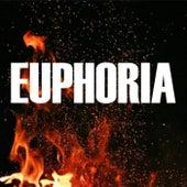 Euphoria van Sebastian Coronel