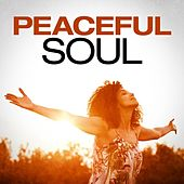 Peaceful Soul de Various Artists