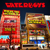 Where the Action Is de The Waterboys