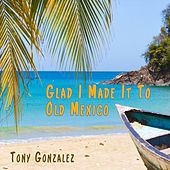 Glad I Made It to Old Mexico by Tony Gonzalez
