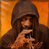 Lost Files by Lil AJ
