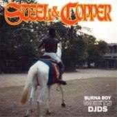 Steel & Copper von Burna Boy