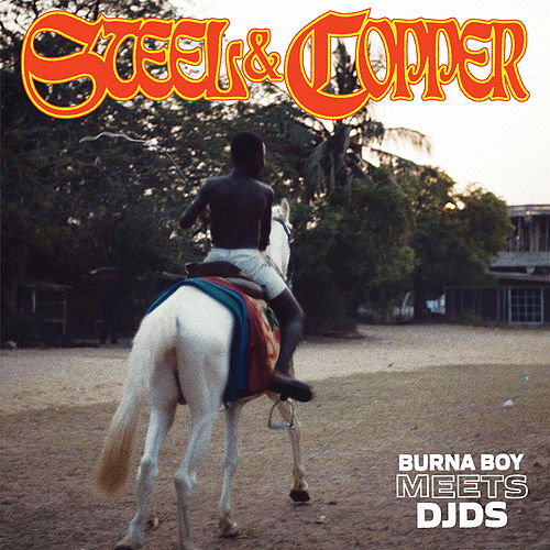 Steel & Copper von Burna Boy