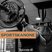 Sportskanone, Vol. 3 (Get In Shape Again. Perfect Motivation Sound For Your Workout) von Various Artists