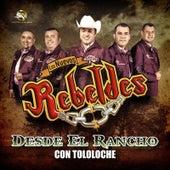 En Vivo Desde el Rancho Con Tololoche by Los Nuevos Rebeldes