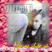 Não Me Ilude Não by Handriell X
