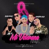 Mi Veterana (Remix) de El Chino