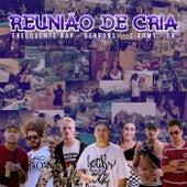 Reunião de Cria by Freequente Rap