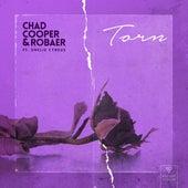 Torn (feat. Emelie Cyréus) by Chad Cooper x Robaer x Misha