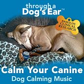 iCalmDog: Through a Dog's Ear - Calm Your Canine de Lisa Spector