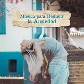 Música para Reducir la Ansiedad: Música Relajante para Calmar la Mente y Dejar de Pensar de Various Artists