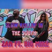 Slow Rollin' in the South de Zan Harrold