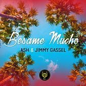 Besame Mucho (Moombahton Summer Mix) by Ash