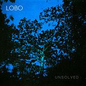Unsolved by Lobo