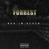 Nur de Forrest