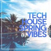 Tech House Spring Vibes von Various