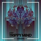 Trippy Mind (EXEPLOS!V3 REMIX) by Exeplos!V3