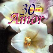 30 Exitos del Amor de Various Artists