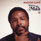Symphony / My Last Chance (SalaAM ReMi Remix) van Marvin Gaye