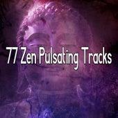 77 Zen Pulsating Tracks von Massage Therapy Music
