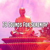 79 Sounds for Serenity by Classical Study Music (1)