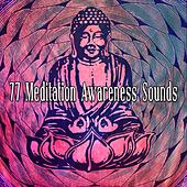77 Meditation Awareness Sounds von Entspannungsmusik