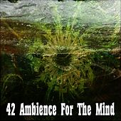 42 Ambience for the Mind by Music For Meditation