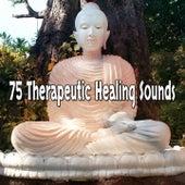 75 Therapeutic Healing Sounds de Meditación Música Ambiente
