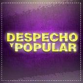 Despecho y Popular de Various Artists