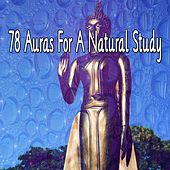 78 Auras for a Natural Study von Massage Therapy Music