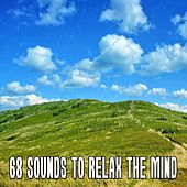 68 Sounds to Relax the Mind de Massage Tribe