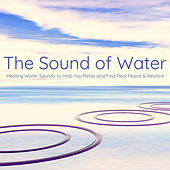 The Sound of Water – Healing Water Sounds to Help You Relax and Find Real Peace & Restore de Various Artists