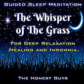 Guided Sleep Meditation: The Whisper of the Grass. for Deep Relaxation, Healing & Insomnia van The Honest Guys