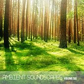 Ambient SoundScapes, Vol 6 by Various Artists