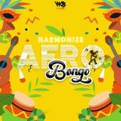 Afro Bongo von Harmonize