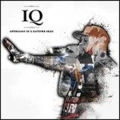 Anthology of a Saytown Shad de IQ
