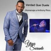 Verdad Que Duele (Homenaje a Anthony Rios) by Yiyo Sarante