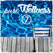 Pure Wellness 7 von Various Artists