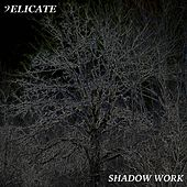 Shadow Work by Delicate