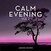 Calm Evening (Vol 2) by Various Artists