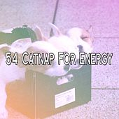 54 Catnap for Energy by Ocean Sounds Collection (1)