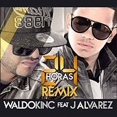 24 Horas (Remix) by Waldokinc El Troyano