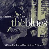 An Introduction To The Blues Vol, 1 by Various Artists