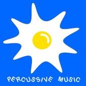 Percussive Music di Musique Chienne